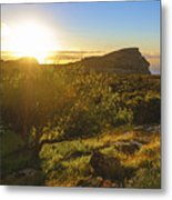 Hiking Tent Under Apple Tree, Table Mountain National Park, Cape Town, Western Cape, South Africa Metal Print