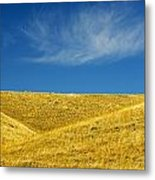Hills And Clouds, Cypress Hills Metal Print by Mike Grandmailson