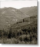 Hills In Black And White Metal Print