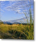 Hills Loom In The Distance Metal Print