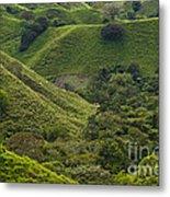 Hills Of Caizan 2 Metal Print