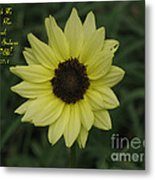 His Love Endures Forever Metal Print