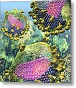 Hiv Three Sectioned Virions On Blue Metal Print