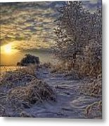Hoar Frost Covered Trees At Sunrise Metal Print