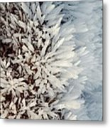 Hoar Frost Crystals On A Rock Metal Print