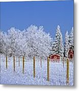 Hoarfrost On Trees Around Red Barns Metal Print