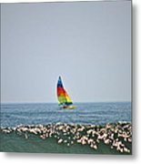 Hobie Cat Metal Print