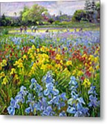 Hoeing Team And Iris Fields Metal Print