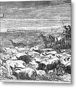 Hog Driving, 1868 Metal Print