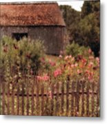 Hollyhocks And Thatched Roof Barn Metal Print