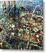 Homage To Monet Metal Print by Todd Sherlock