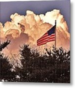 Home Of The Brave Metal Print