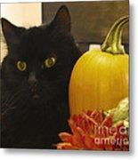 Black Cat And Pumpkin Metal Print