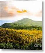 Hope Of Fall Metal Print