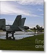 Hornet And Gooney After The Storm Metal Print
