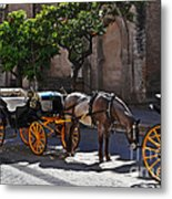 Horse And Carriage Metal Print