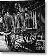Horse Cart Metal Print by Thanh Tran