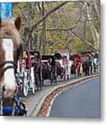 Horse-drawn Carriages Metal Print