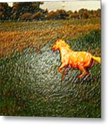 Horse Frolicking Metal Print