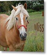 Horse Miss You Metal Print