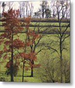 Horse On The Pasture Metal Print