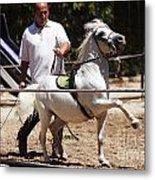 Horse Training Metal Print