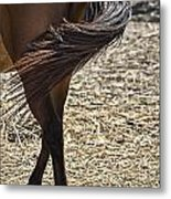 Horse With No Name V4 Metal Print