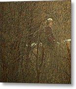 Horseback In The Garden Metal Print by Lenore Senior