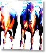 Horses-30 Metal Print