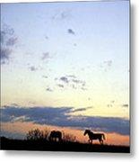 Horses And Sky Metal Print