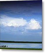 Horses By Lake On Overcast Day Metal Print