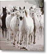 Horses Galloping Metal Print