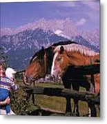 Horses In Switzerland Metal Print