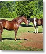 Horses Of A Different Color Metal Print