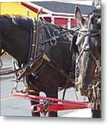 Horses Of Mackinac Metal Print