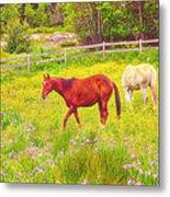 Horses Paradise Metal Print
