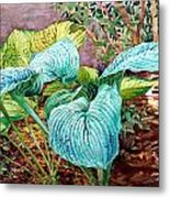 Hosta Metal Print by Peter Sit