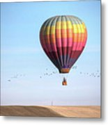 Hot Air Balloon And Birds Metal Print by Photo by Greg Thow
