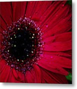 Hot Pink Flame Metal Print