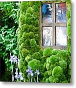 House With Moss Walls Metal Print