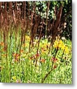 How Does Your Garden Grow.. Metal Print