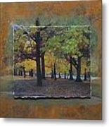 Humboldt Park Trees Layered Metal Print