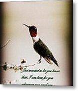 Hummingbird - Cards Metal Print