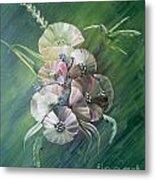 Hummingbird-green Metal Print