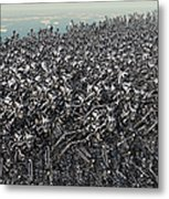 Hundreds Of Robots Running Wild Metal Print