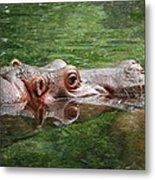 Hungry Hippo Metal Print