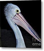 Hungry Pelican Metal Print