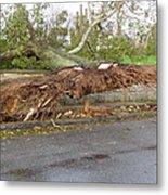 Hurricane Sandy II Metal Print