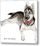Husky With Blue Eyes And Red Collar Metal Print
