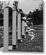 Hyacinth Pillars Metal Print